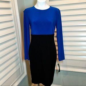 NWT, Ralph Lauren Color Block Dress, 10